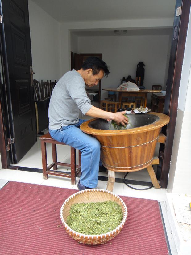 Long Jing in Wengjiashan